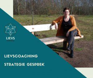 LIEVScoaching Strategie Gesprek